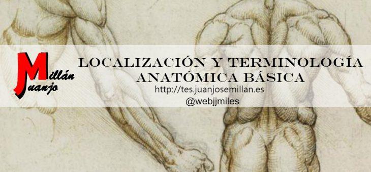Localización y terminología anatómica básica